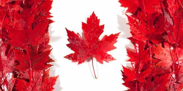 بهترین شهرهای کانادا برای سکونت کدامند؟