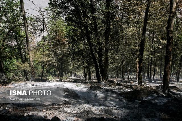هجوم مردم شهرهای کم آب به مازندران