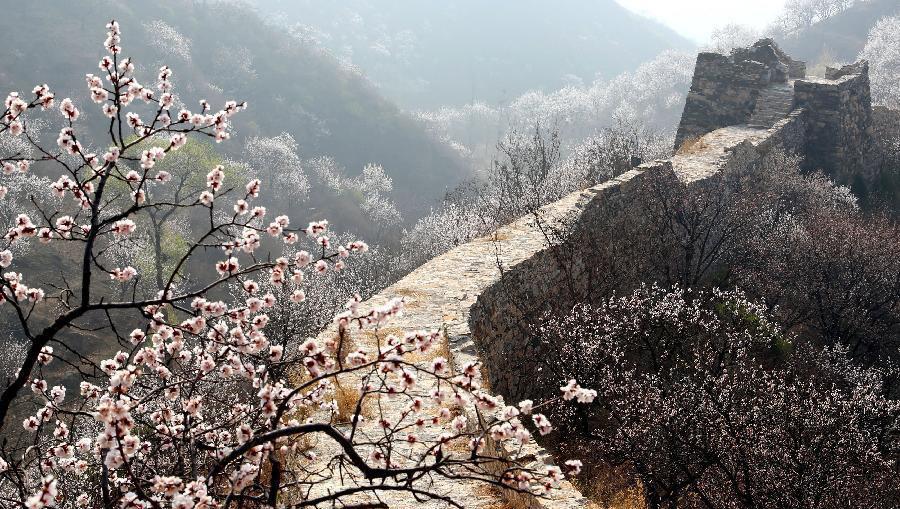 آب و هوای پکن، چه زمانی برای سفر مناسب است