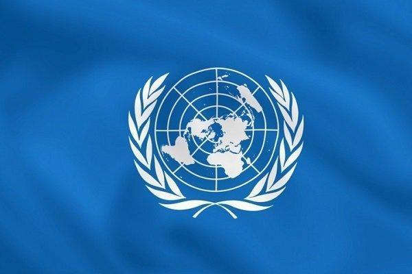 ترکیه همچنان خواستار اصلاح سازمان ملل است