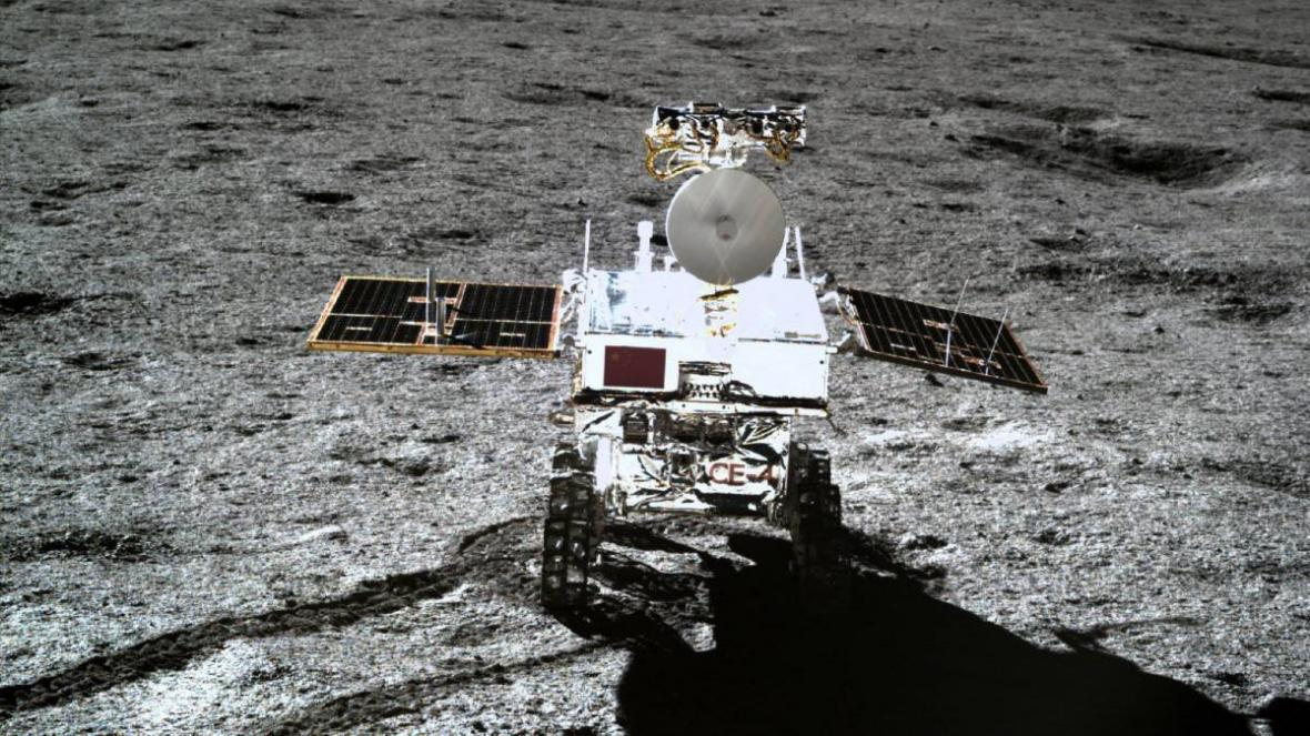 رشد اولین گیاه در کره ماه توسط چینی ها