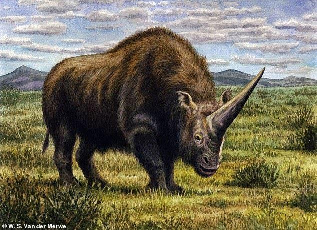 تک شاخ 3.5 تنی سیبری تا 39 هزار سال پیش هم وجود داشت، عکس