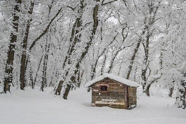 بارش برف اشکورات رحیم آباد رودسر را سپیدپوش کرد