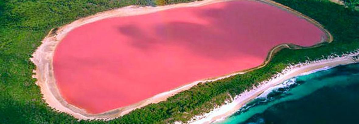 تماشای این دریاچه صورتی را از دست ندهید ، دریاچه هیلیر در کرانه اقیانوس منجمد جنوبی