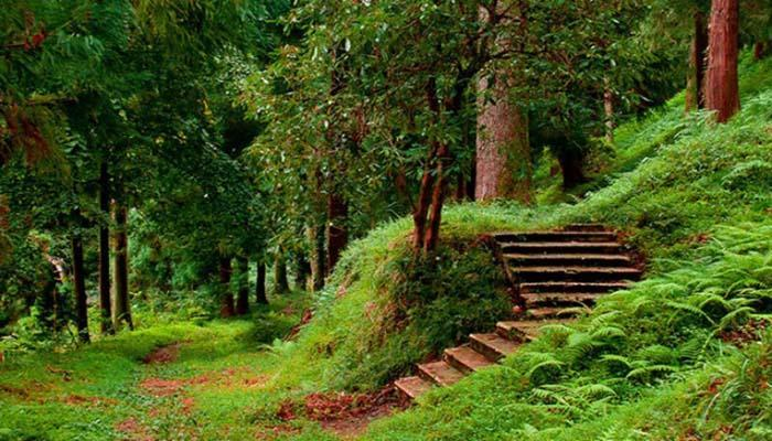 باغ ملی گیاه شناسی گرجستان