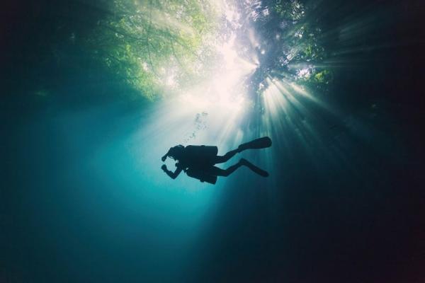 تور مکزیک: غواصی را در جنگل زیرزمینی مکزیک تجربه کنید
